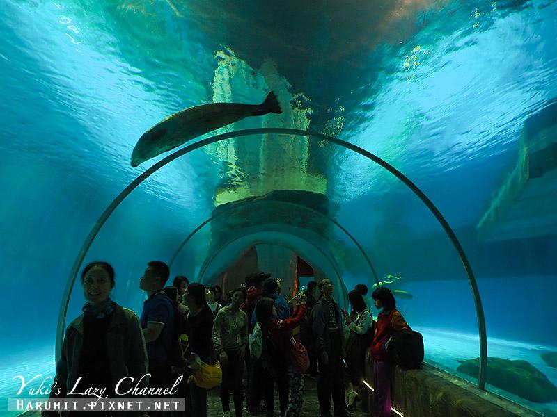 香港海洋公園44.jpg