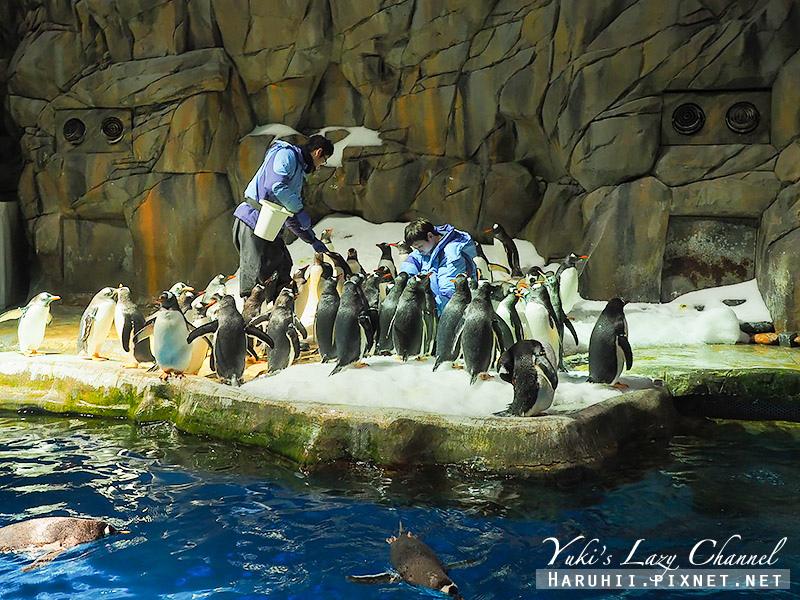 香港海洋公園49.jpg