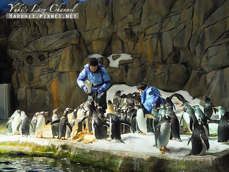 香港海洋公園50.jpg