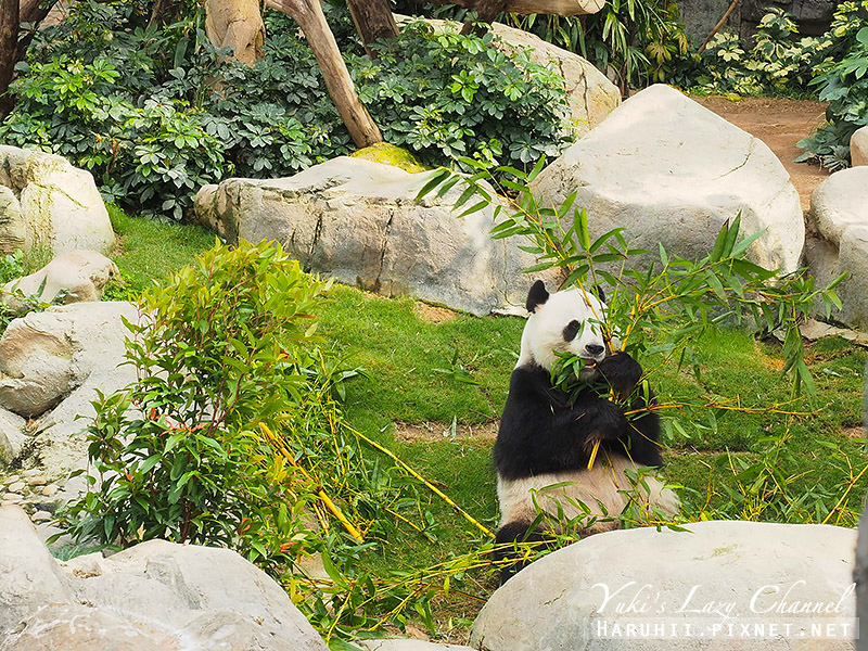 香港海洋公園85.jpg