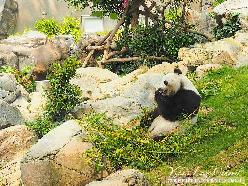 香港海洋公園87.jpg