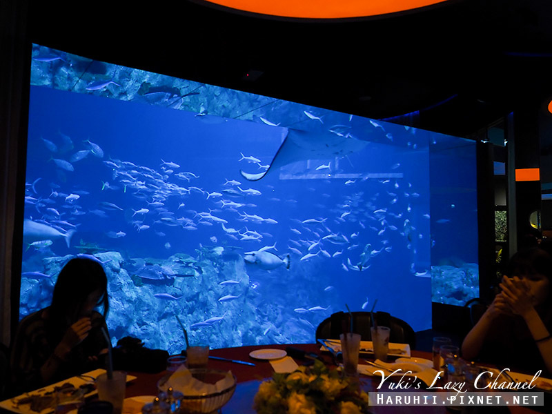 香港海洋公園94.jpg