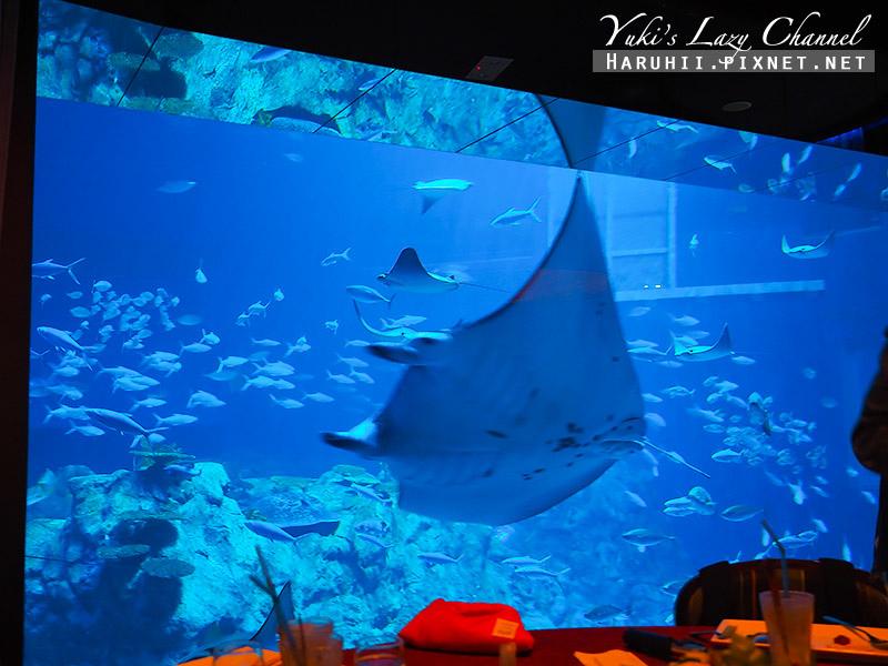 香港海洋公園96.jpg