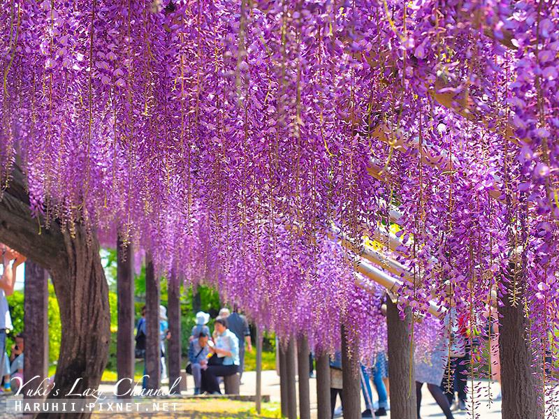 京都紫藤鳥羽水環境保全中心9.jpg