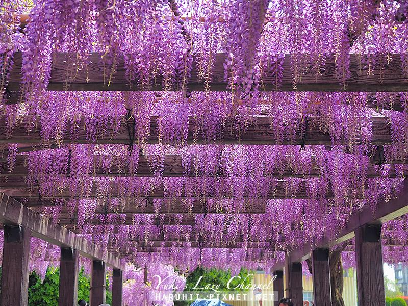 京都紫藤鳥羽水環境保全中心41.jpg