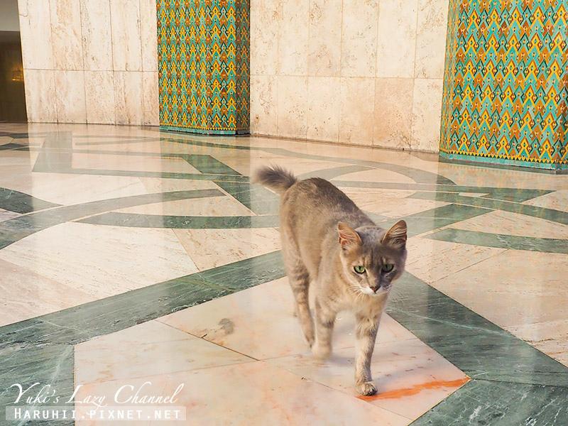 哈桑二世清真寺32.jpg