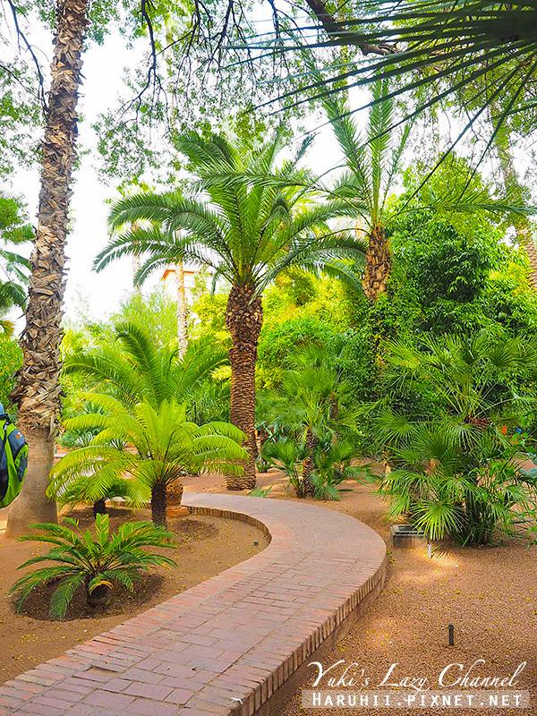 Majorelle Garden15.jpg