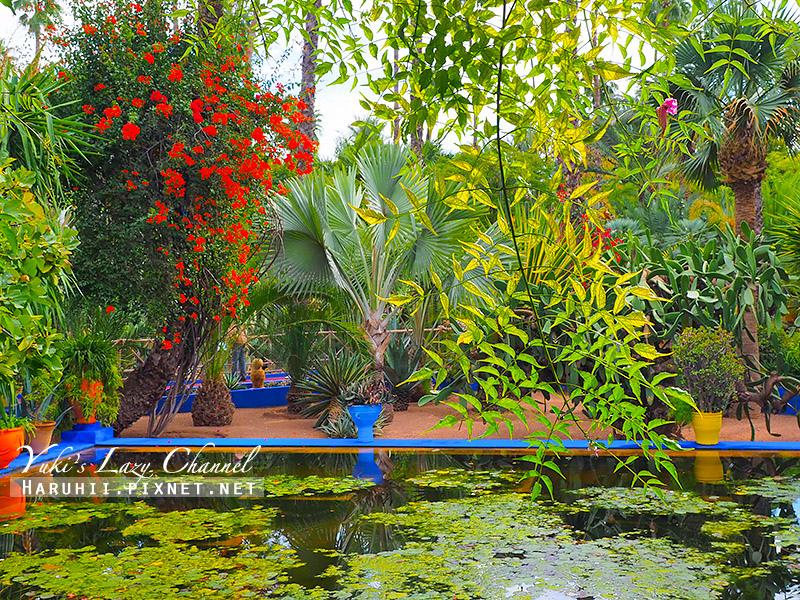 Majorelle Garden21.jpg