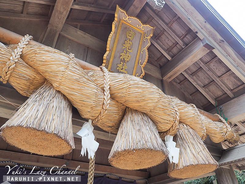 白兔神社7.jpg