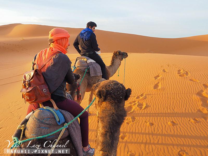撒哈拉沙漠24.jpg