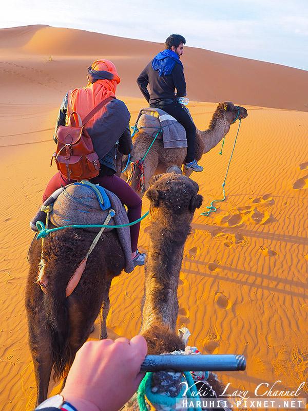 撒哈拉沙漠33.jpg