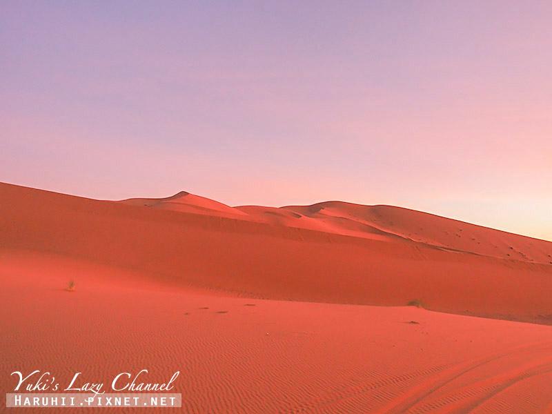 撒哈拉沙漠40.jpg