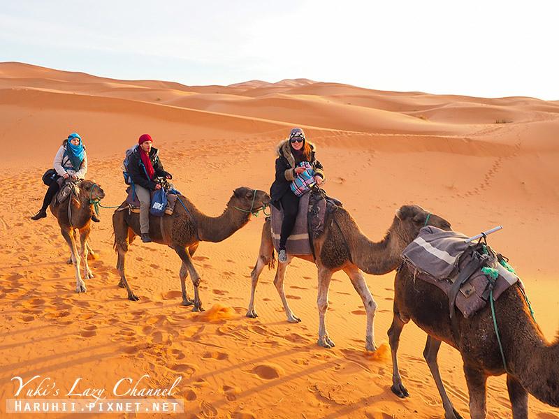 撒哈拉沙漠42.jpg
