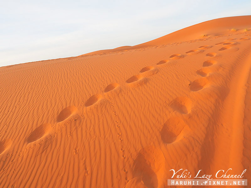 撒哈拉沙漠43.jpg
