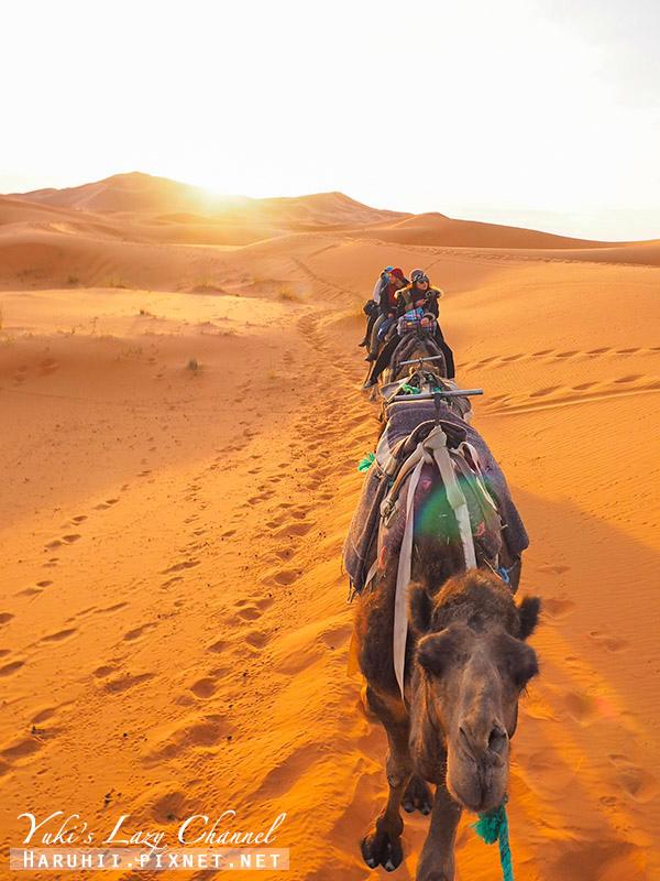 撒哈拉沙漠44.jpg