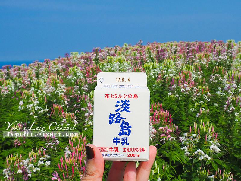 淡路島あわじ花さじき26.jpg