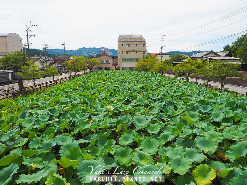 人吉青井阿蘇神社1.jpg