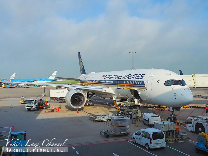 新航A350 1.jpg