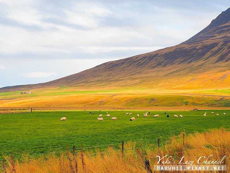 冰島公路7.jpg