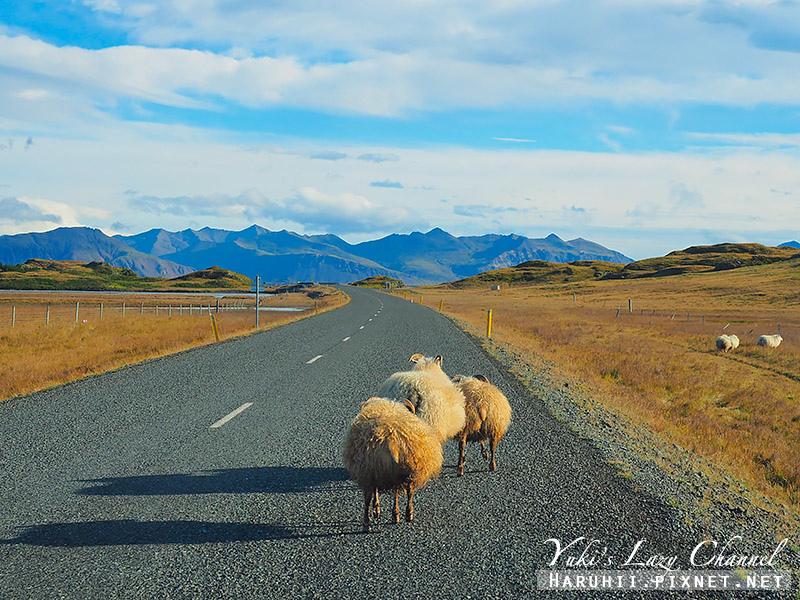 冰島南部自駕1.jpg