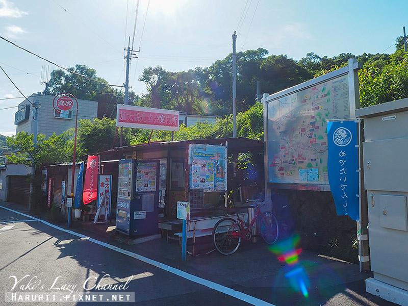 南海電鐵二日券45.jpg