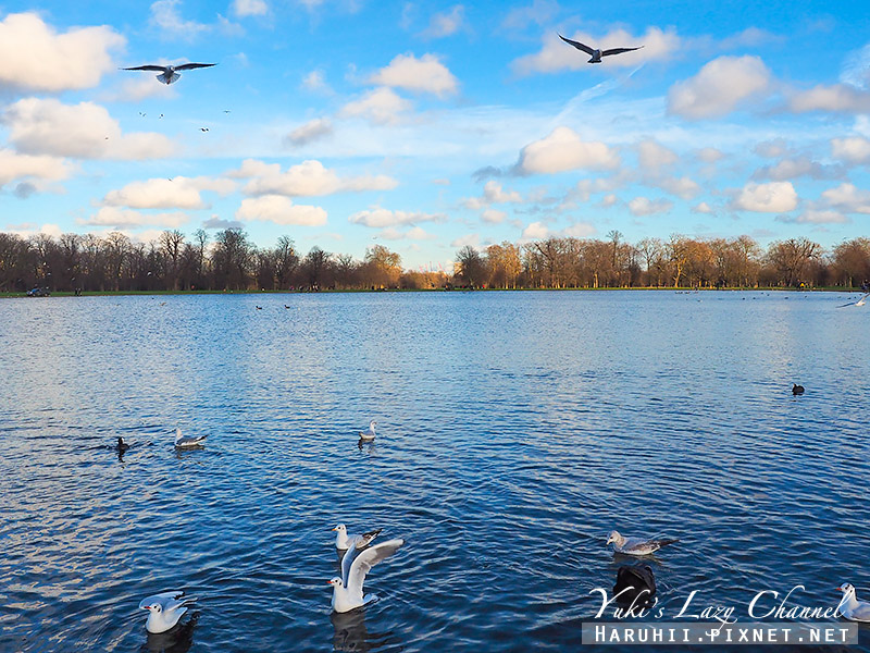 海德公園Hyde park4.jpg