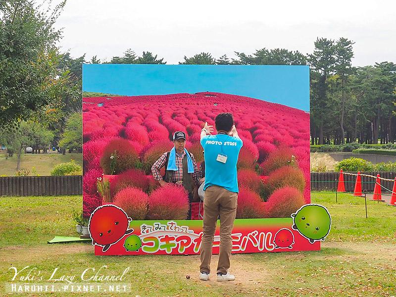 國營日立海濱公園 国営ひたち海浜公園20.jpg