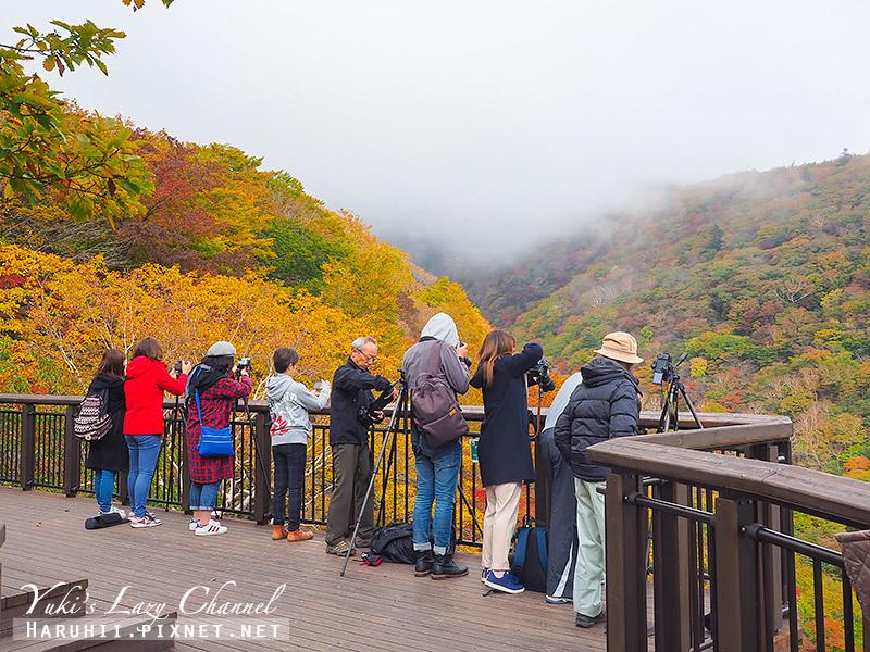 那須高原駒止瀑布駒止の滝5.jpg