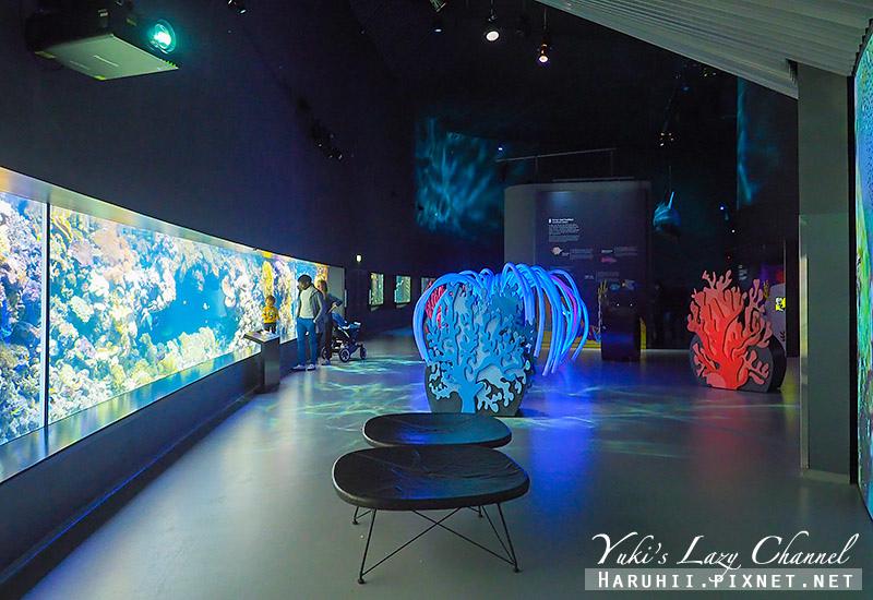 丹麥國家水族館藍色星球18.jpg