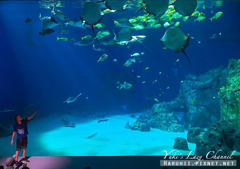 丹麥國家水族館藍色星球31.jpg