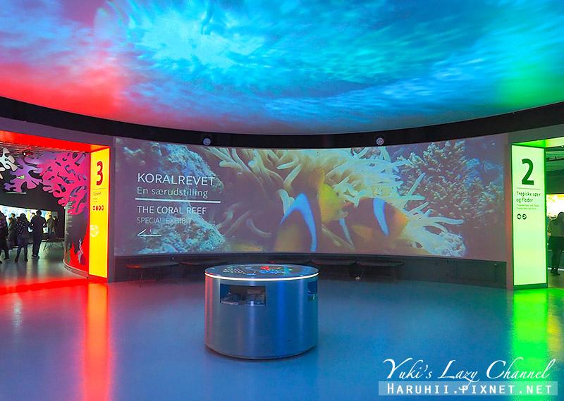 丹麥國家水族館藍色星球36.jpg