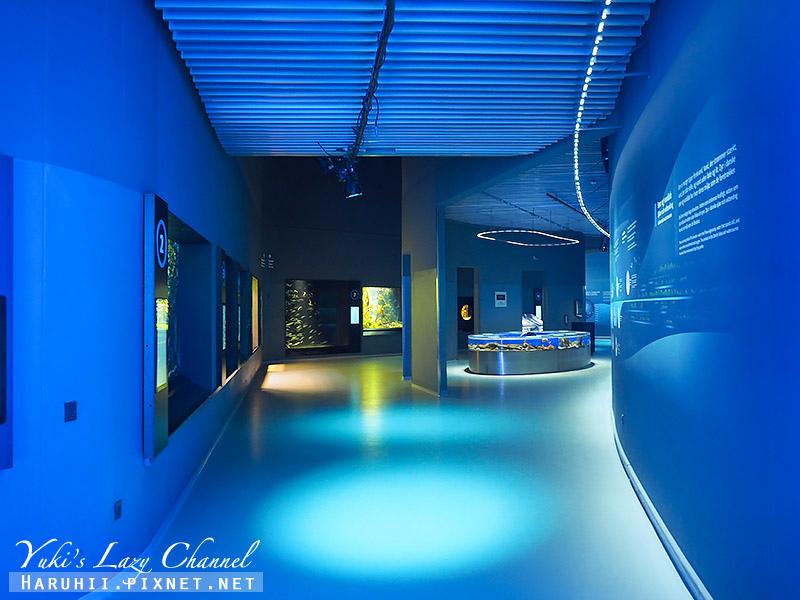 丹麥國家水族館藍色星球37.jpg