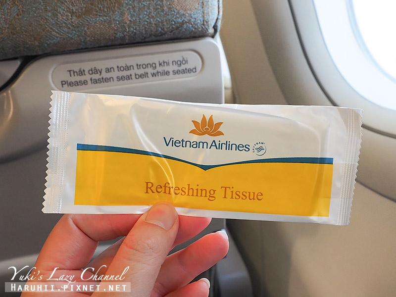 越南航空Vietnam Airlines A321 17.jpg