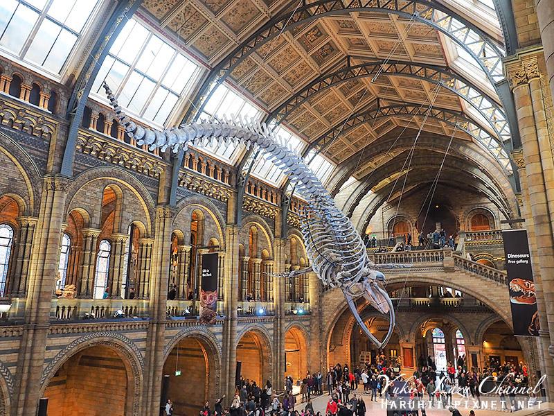 倫敦自然史博物館4.jpg