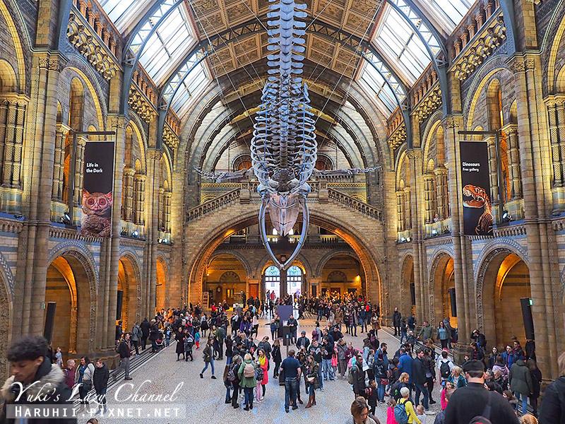 倫敦自然史博物館5.jpg