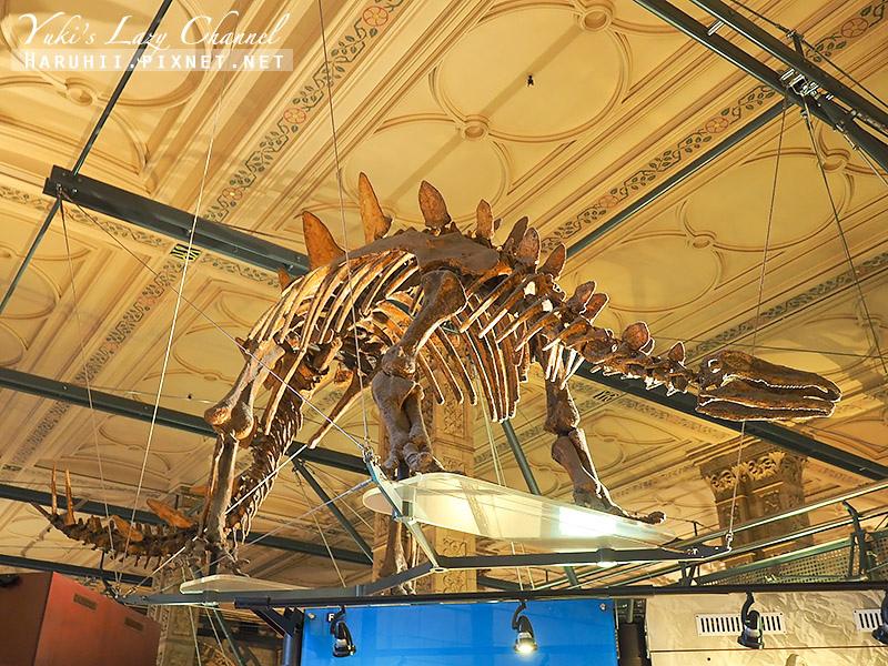 倫敦自然史博物館13.jpg