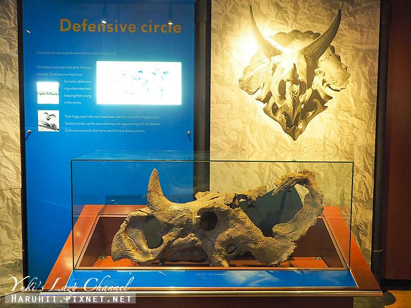 倫敦自然史博物館14.jpg