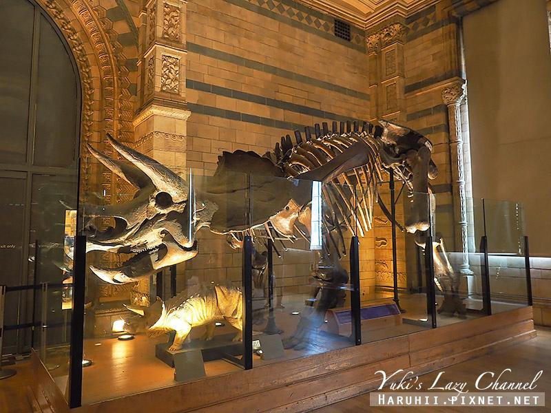 倫敦自然史博物館17.jpg