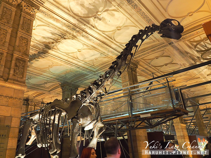 倫敦自然史博物館18.jpg