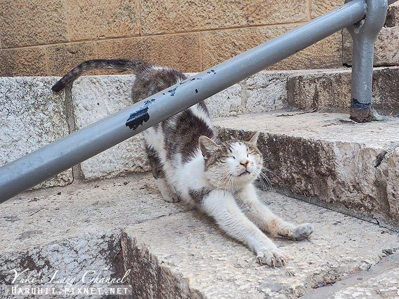 耶路撒冷25.jpg
