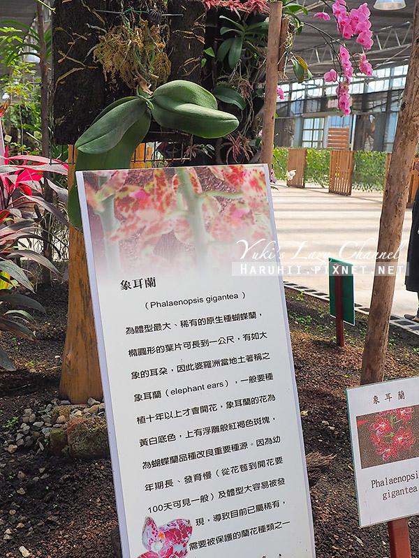 金車礁溪蘭花園7.jpg