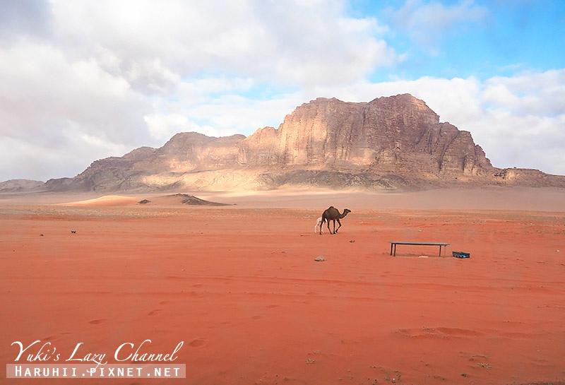 瓦地倫沙漠月亮谷Wadi Rum2