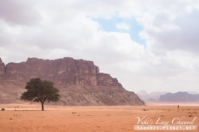 瓦地倫沙漠月亮谷Wadi Rum12