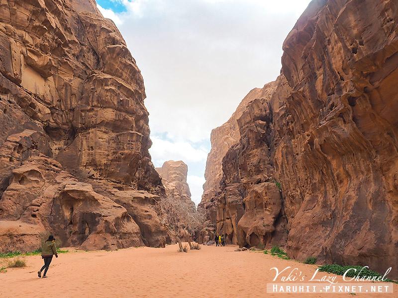 瓦地倫沙漠月亮谷Wadi Rum29