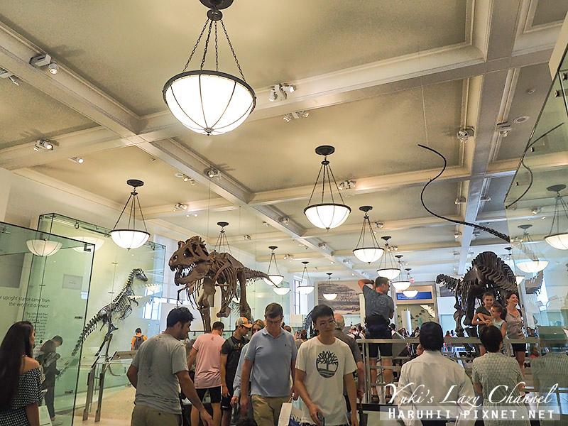 美國自然史博物館8.jpg