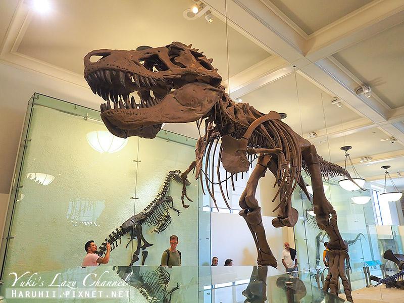 美國自然史博物館9.jpg