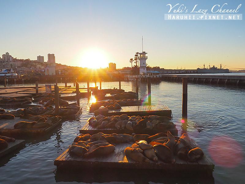 舊金山漁人碼頭Fisherman's Wharf Pier39 13.jpg