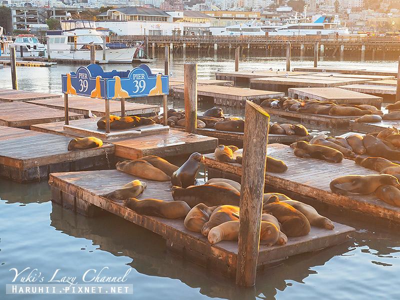 舊金山漁人碼頭Fisherman's Wharf Pier39 18.jpg