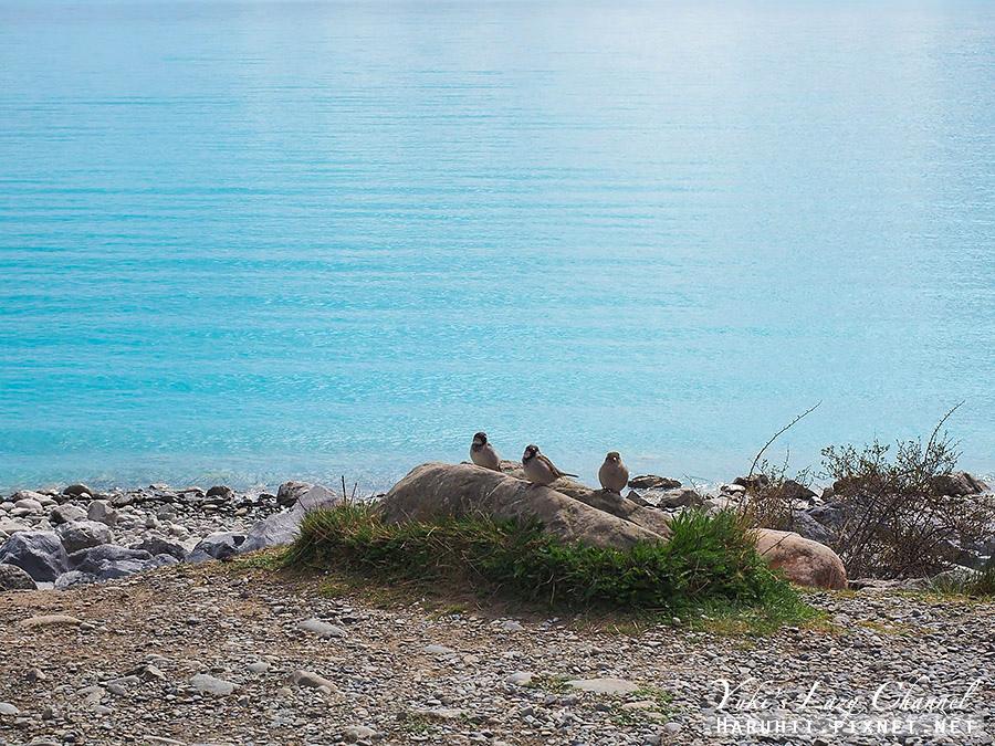 普卡基Lake Pakaki15.jpg