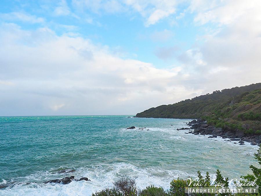 紐西蘭南島最南端布拉夫Bluff6.jpg